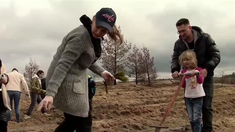 Волонтеры Металлоинвеста из Старого Оскола поддержали международную акцию Сад памяти