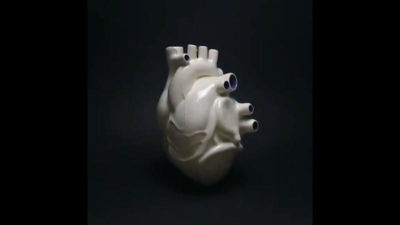 Движение керамического сердца Jago Artist