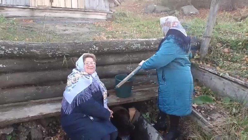 Видео от Управление культуры МО Карсунский район