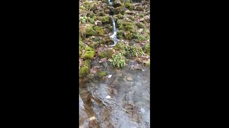Видео от База отдыха Кук Караук