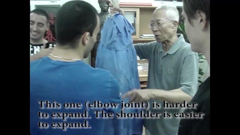 WING CHUNs Bong Sau Discussion with Chu Shong Tin