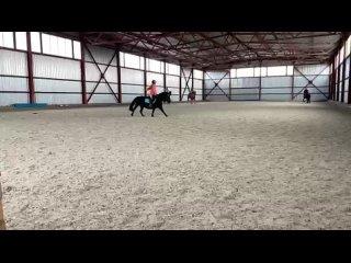 Видео от Конно-спортивный клуб «Цальтан»