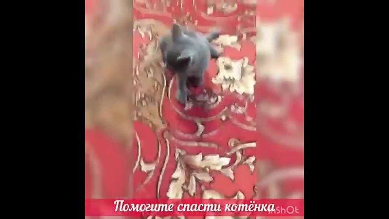 Видео от Доброе Сердце