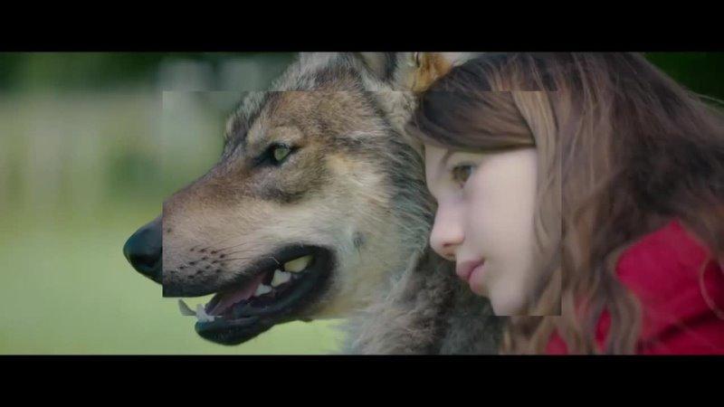 Мой волк 2021 русский трейлер фильма
