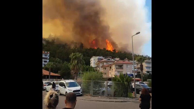 Пожары в Турции 720p mp4