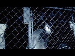 Lupe Fiasco - Words I Never Said feat. Skylar Grey / 2011