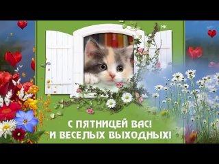 видеооткрытка_с_пятницей_вас_и_веселых.mp4