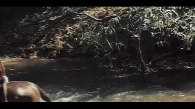 Видео от Сергея Кулика