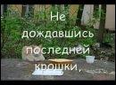 грустное видео про кошек.mp4