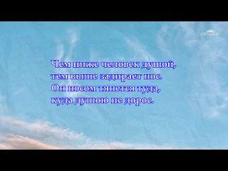 МУДРЫЕ МЫСЛИ - Лучшие Цитаты, Афоризмы, Фразы о жизни со смыслом Читает Леонид Ю