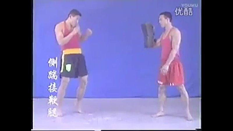 Chinese kung fu sanda kicks and punches