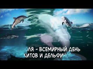Vídeo de Olga Osipova