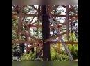 Дом на дереве - vk/kulibino