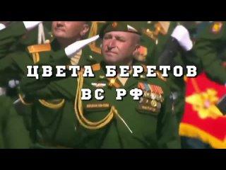 [Беседы у русской печки] Цвета беретов вооружённых сил России