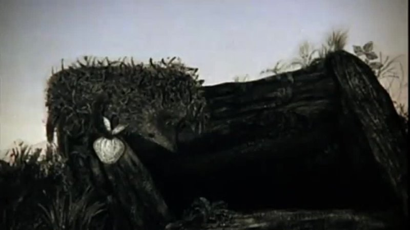 Эхо в колодце. Ежик и сова-Триллер-Ежик в тумане-Популярные вставочки.mp4