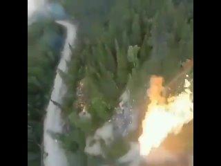 Waldbrände by Menschenhand