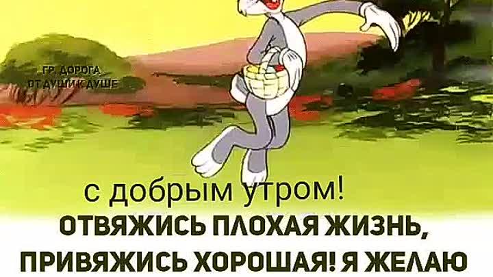 Видео от Светланы Матвеевой
