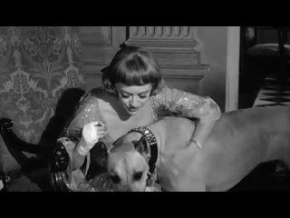 Намертво связанные (1964)