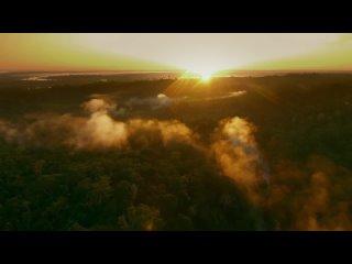 Великие реки Земли. Фильм 01. Амазонка