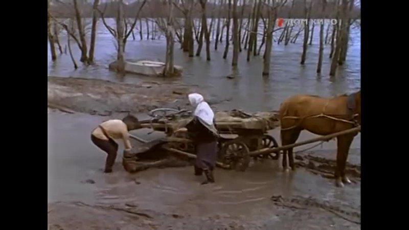 Видео от Библиотека №16 г Белгород
