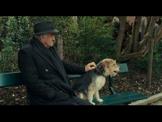 """""""Человек и его собака"""" (2008)"""