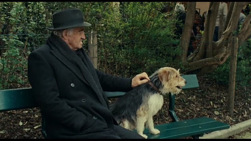 Человек и его собака 2008