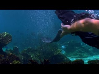 «H2O: Просто добавь воды» - 3x14 Магия русалок