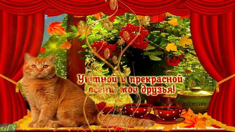 Видео от Елены Кузнецовой