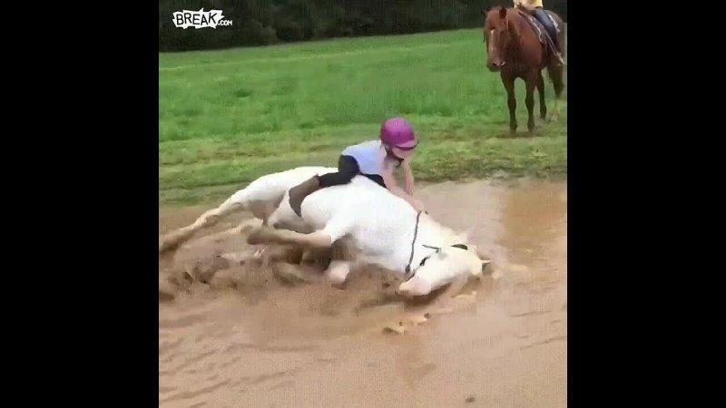 Пони, любящий купаться
