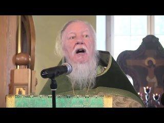 Ты уже в аду, сынок! - фрагмент проповеди протоиерея Дм. Смирнова