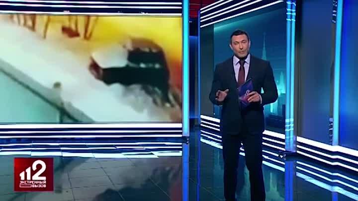 в подмосковье догхантеры устроили массовый расстрел собак из авто.mp4