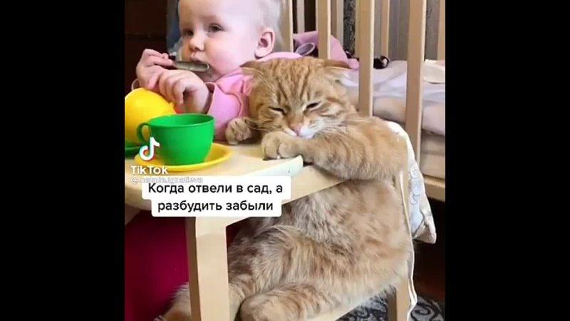 top_iz_tik.tok+InstaUtility_-00_CKT2fJxDCiS_11-139865590_477523419906652_2306611985831434093_n.mp4