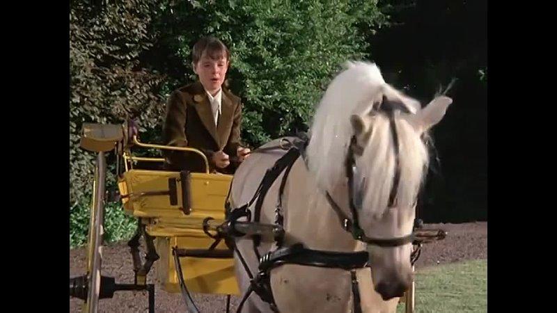 Прокатись на диком пони Ride a Wild Pony 1975 Австралия