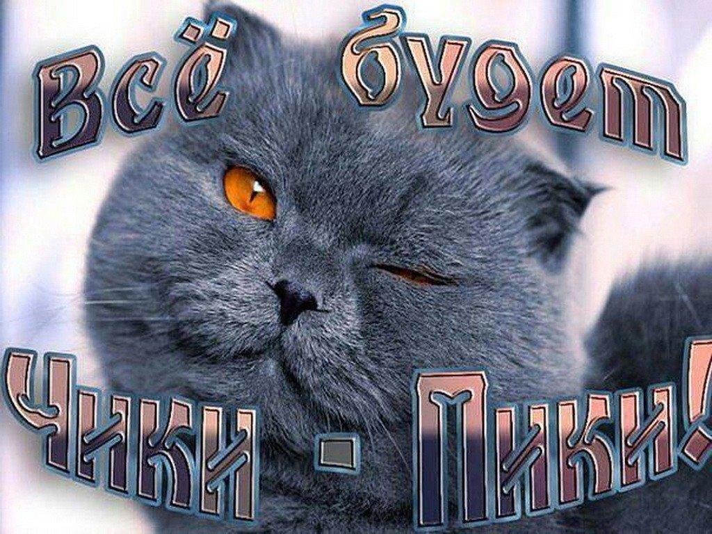Толстой, не скучать открытка