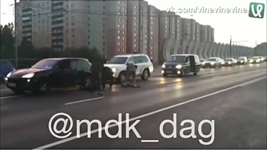 mdk_dag_video_1522848415438.mp4