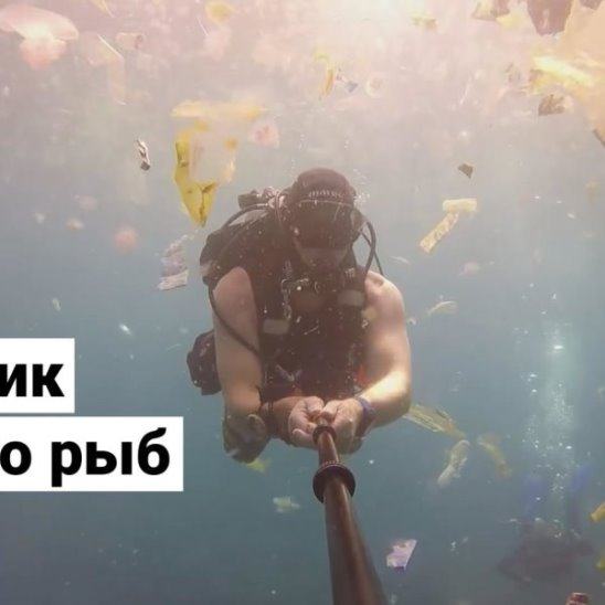 Пластик вместо рыбы в океане