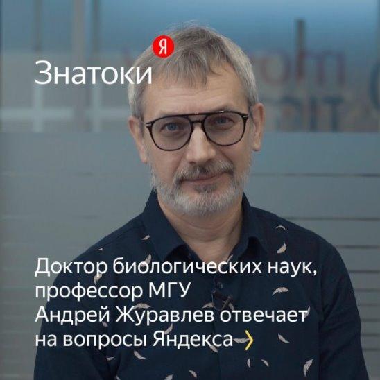 «Знатоки»: Андрей Журавлев — о динозаврах и доисторических животных