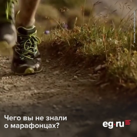 Интересные факты о марафоне