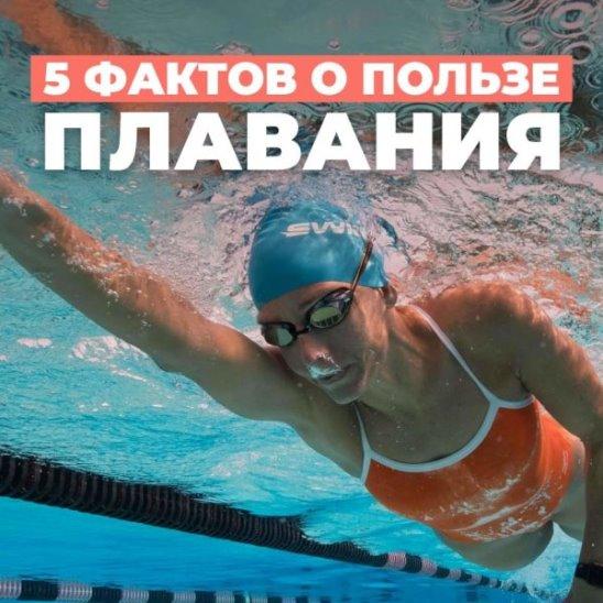 5 фактов о пользе плавания
