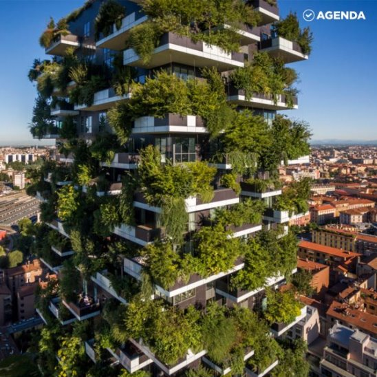 «Вертикальный лес» спасает города