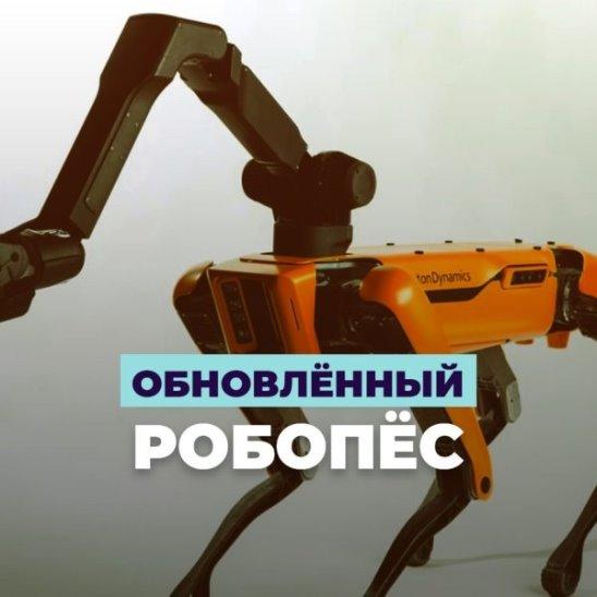 Обновлённый робопёс