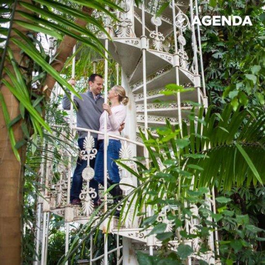 Это крупнейшая оранжерея в мире с уникальной коллекцией растений