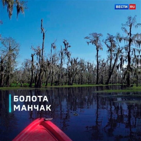 Болота Манчак – одно из самых загадочных мест в мире! Вы бы хотели побывать там?