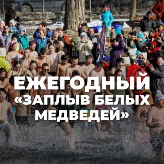 Ежегодный «Заплыв белых медведей»