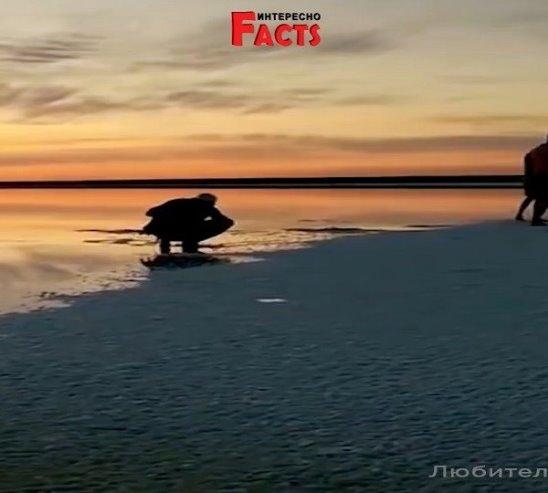 «Мертвое море» России - озеро Эльтон!