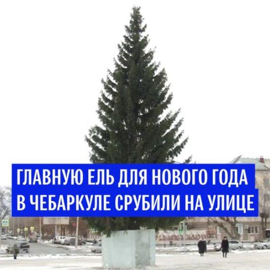 Главную новогоднюю ель в Чебаркуле срубили на улице