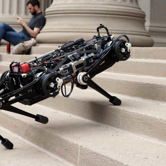 Четвероногий робот делает сальто