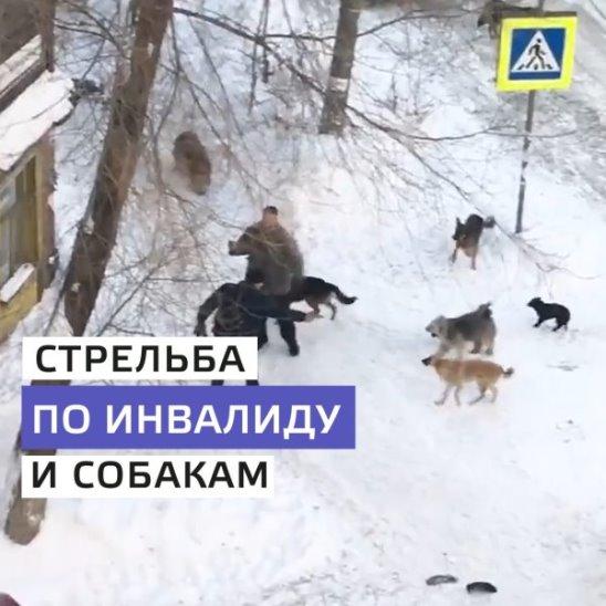 В Самаре расстреляли инвалида и собак