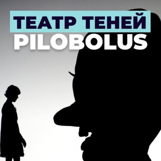 Театр теней Pilobolus