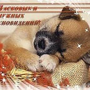 Найти открытки с пожеланием спокойной ночи 67